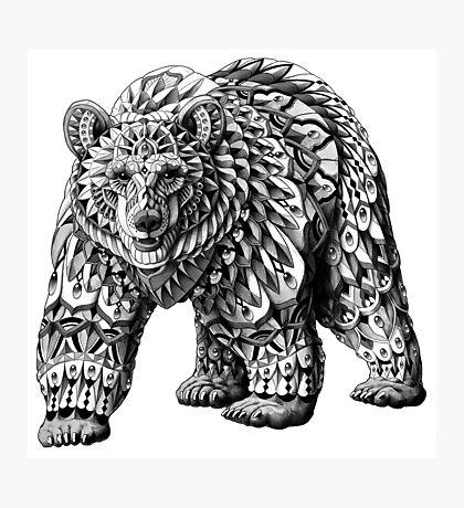 Ornate Bear Photographic Print