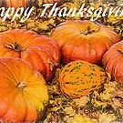 Happy Thanksgiving by jules572