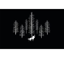 Fantastic Wolf Photographic Print