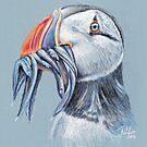 Beak Quiet by Paul-M-W