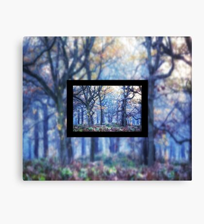 The Enchanted Forest Landscape with Single border Canvas Print
