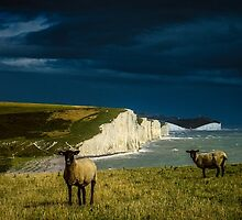 Four Sheep and Seven Sisters by Chris Lord