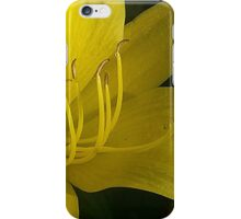 Yellow Day Lily iPhone Case/Skin