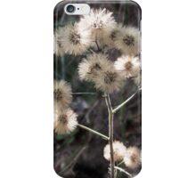 Autumn Aster iPhone Case/Skin