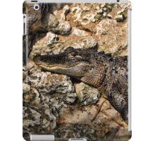 Gator Duvet iPad Case/Skin