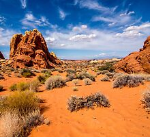 Fire Canyon 1 by barkeypf