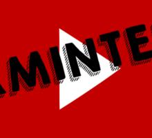 Youtube's #TeamInternet Sticker