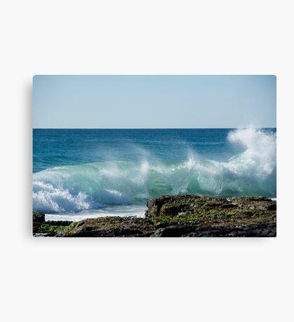 Splashback Canvas Print
