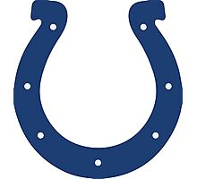 Colts Photographic Print