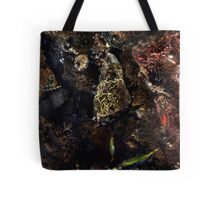 The Jewell Tote Bag