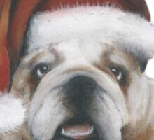Bulldog Christmas Sticker