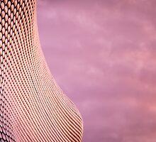 Birmingham Selfridges Building  by RossJukesPhoto
