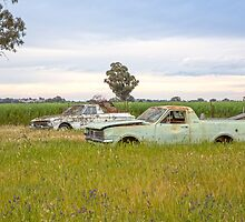 Old Farm Utes...  by mitpjenkeating