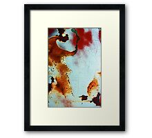 time takes it toll Framed Print