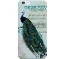 Bird Song - Peacock iPhone Case/Skin