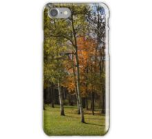 Autumn Forests and Fields iPhone Case/Skin
