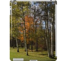 Autumn Forests and Fields iPad Case/Skin