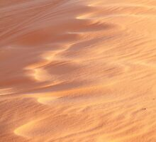 Wind Sculpted Sands by Roupen  Baker