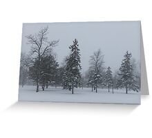 A Cold December Morning - Snowstorm in the Park Greeting Card