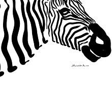 zebra by alexandr-az