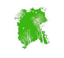 Forest Silhouette in Green Photographic Print
