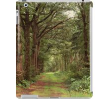 Old Country Road iPad Case/Skin