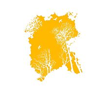 Forest Silhouette in Orange Photographic Print