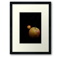 Standing on the shoulders of giants Framed Print