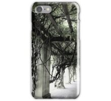 Intertwined iPhone Case/Skin