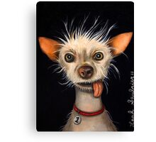 Ugly Dog Canvas Print