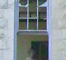 The woman standing in the window??  SERIES - 4 by barnsis