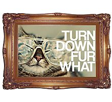Turn Down Fur What Photographic Print