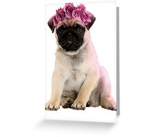 Hipster Pug Puppy Greeting Card
