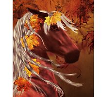 Autumn Horse Photographic Print