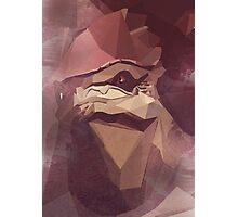 Low Polygon Wrex Photographic Print