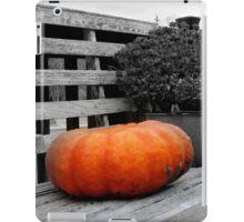 Lonely Pumpkin iPad Case/Skin