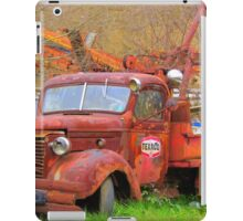 Old Red iPad Case/Skin