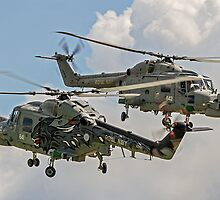 "702 NAS ""Black Cats"" dancing by Colin Smedley"