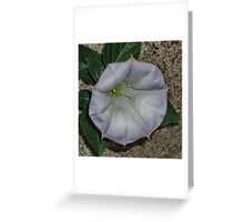Along the Curb Greeting Card