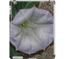 Along the Curb iPad Case/Skin
