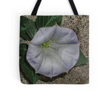 Along the Curb Tote Bag