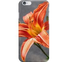 Tiger Lilly iPhone Case/Skin