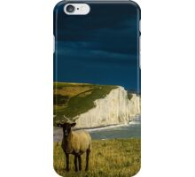 Four Sheep and Seven Sisters iPhone Case/Skin