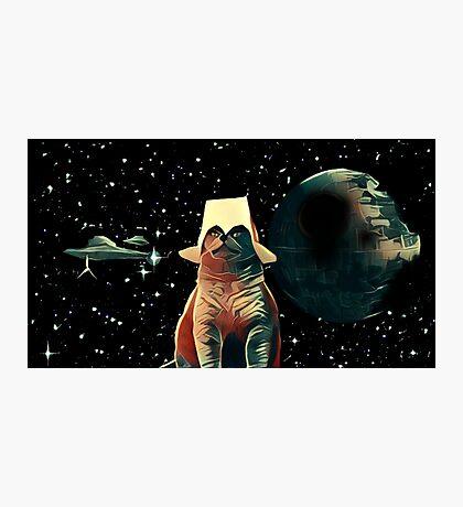 Cat Wars Photographic Print