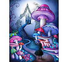 Alice Gates to Wonderland Photographic Print