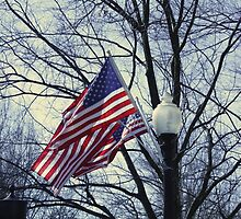 American Flags by EmiMills