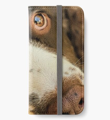 Want Me to Take You For a Walk? iPhone Wallet