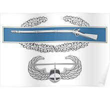 Combat Infantry Badge and Air Assault Poster