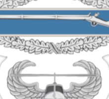 Combat Infantry Badge and Air Assault Sticker