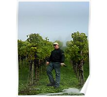 Swiss Vineyard Poster